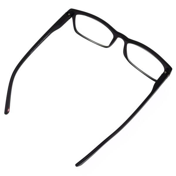 READING SPECTACLES